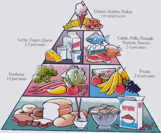 Imágenes Y Dibujos De Los Alimentos Nutritivos Para Imprimir
