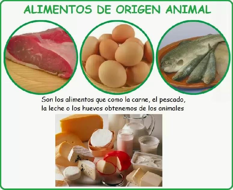 Dibujos y Figuras de Alimentos de Origen Animal | Material