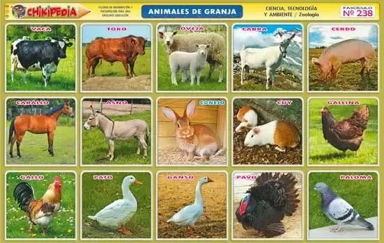 animales-de-granja