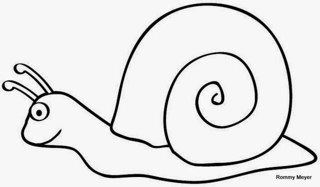 Imágenes y Dibujos de caracoles para colorear | Material para