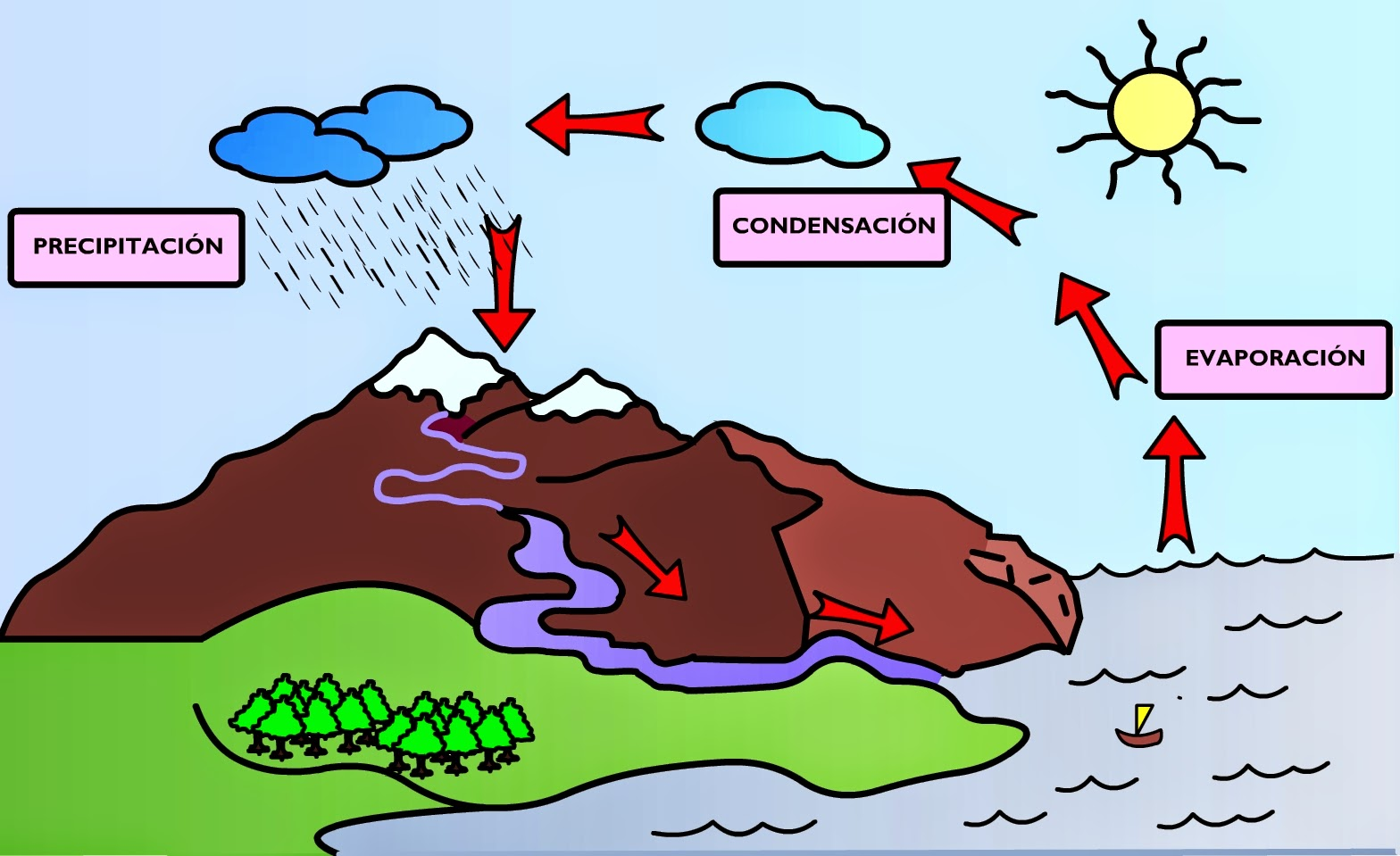 imágenes del ciclo hidrologico del agua para colorear e imprimir ...