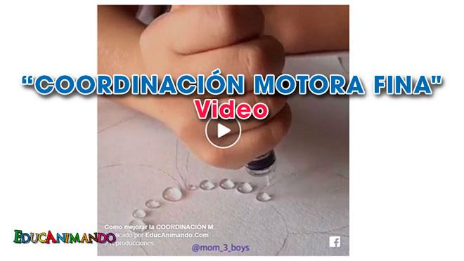 motora-fina