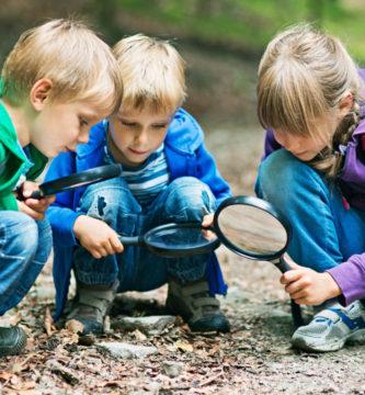 Actividades para enseñar los sentidos;